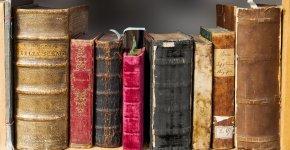 Lyon propose un service de bibliothèque à domicile